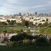 Dolores Park San Francisco SF CA Before COVID19 By Miss P